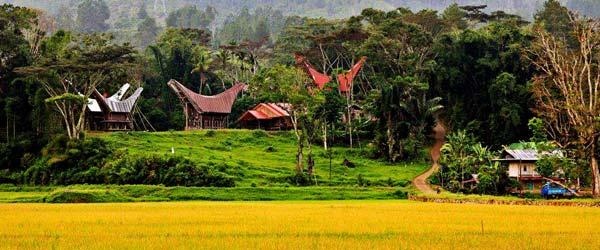 Sulawesi-Tanah-Toraja